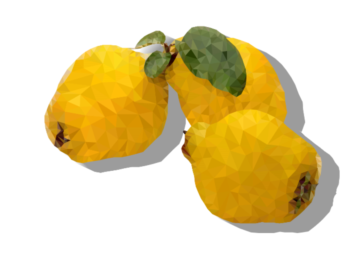 Quince yellow Low poly