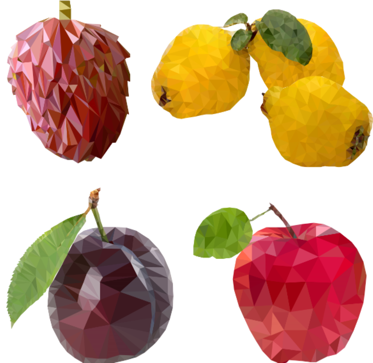Fruit. Annona, Quince, Plum, Apple.
