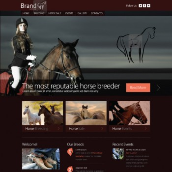 Website template for horses