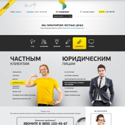 Computer industry, Landing page HTML template
