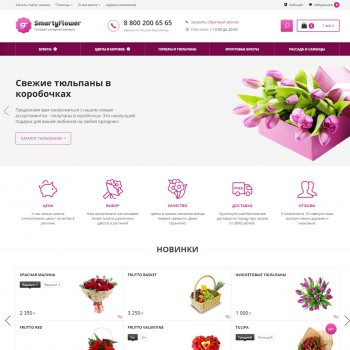 E-commerce, Multipurpose websites Simpla template