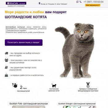 Animals, Landing page WYSIWYG Web Builder template