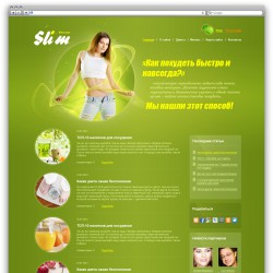 Blog, Health WordPress template