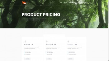 Business, Web design HTML template