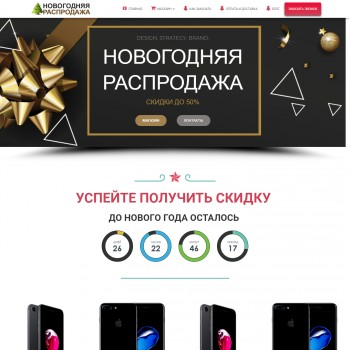 Website Landing on WordPress New Year Online Shop Sale iPhone